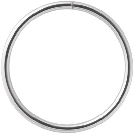 Steel Basicline® Continuous/ Seamless Ring
