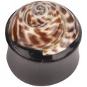 Organic Shell Buffalo Horn Brown Plug